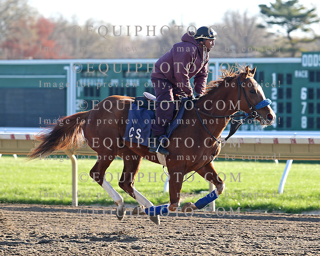 Morning Workouts at Monmouth Park Racetrack in Oceanport, N.J.