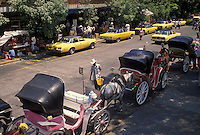AJ1868, Mexico, Guadalajara, Horse drawn carriages and yellow taxis waiting for passengers, line the street downtown Guadalajara in the state of Jalsico.