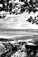 beach house yard