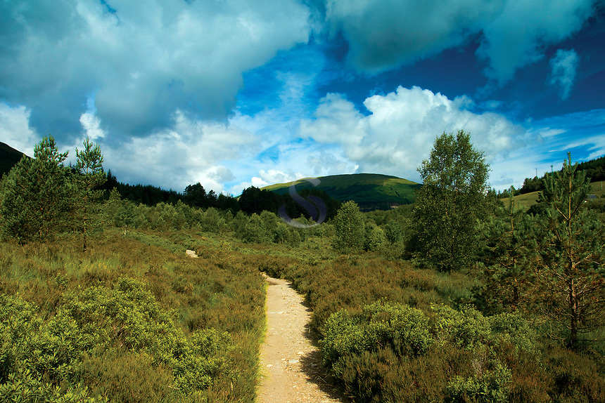 The West Highland Way near Tyndrum, Loch Lomond and the Trossachs National Park