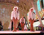 Fremont Street Experience Holiday on Ice Show rehearsal for upcoming show