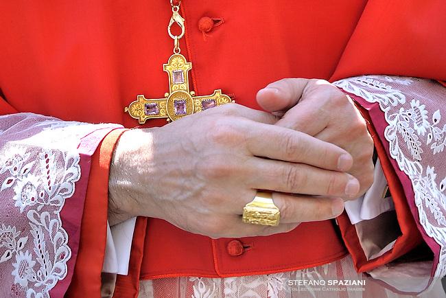 Cardinal Particular Crucifix .12 March 2010