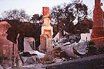 Oakland fire, 1991 East Bay Hills Fire, chimneys