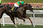 ARCADIA, CA FEBRUARY 10:  #6 Om, ridden by Flavien Prat, in the stretch of  the Thunder Road Stakes (Grade lll) on February 10, 2018 at Santa Anita Park in Arcadia, CA.(Photo by Casey Phillips/ Eclipse Sportswire/ Getty Images)