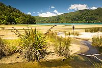 Hiker on beach on Abel Tasman Coastal Track, Abel Tasman National Park, Nelson Region, New Zealand, NZ