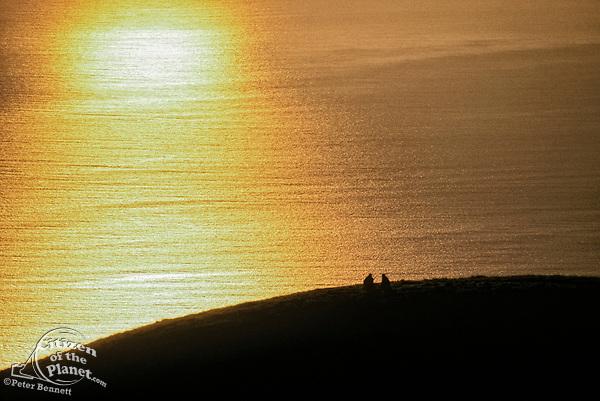 Couple Watching Sunset, Marin County, California (NC)