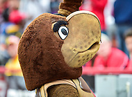 College Park, MD - OCT 1, 2016: Maryland Terrapins mascot waves to the crowd during game between Maryland and Purdue at Capital One Field at Maryland Stadium in College Park, MD. The Terps got the win 50-7 over visiting Purdue. (Photo by Phil Peters/Media Images International)