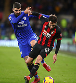 2nd February 2019, Cardiff City Stadium, Cardiff, Wales; EPL Premier League football, Cardiff City versus AFC Bournemouth; Callum Paterson of Cardiff City battles with Adam Smith of Bournemouth