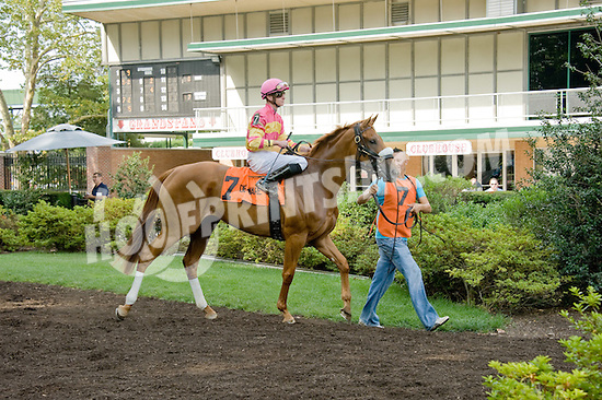 Welcome Dance before The Walking in Da Sun Stakes at Delaware Park on 7/11/12