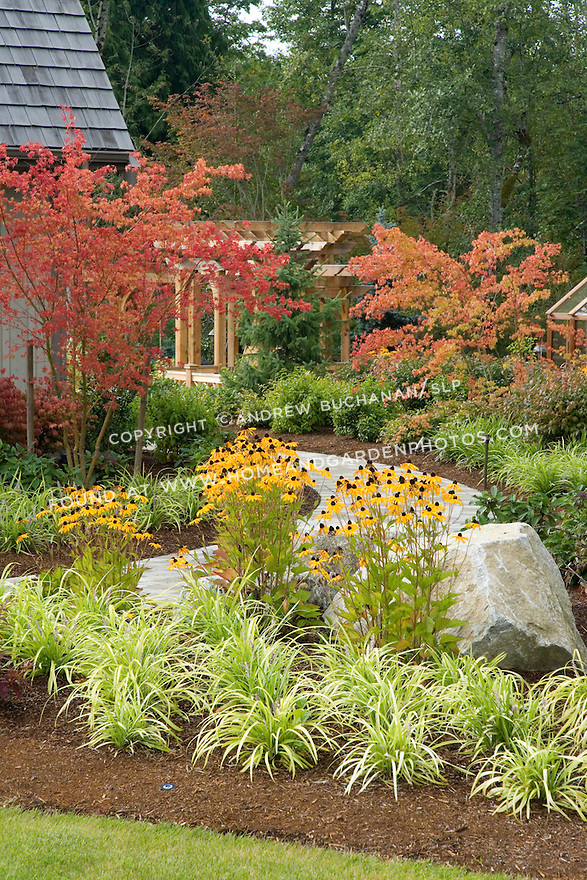 A curving pathway leads past ornamental grasses, black-eyed susans, and Japanese maples in full fall splendor.