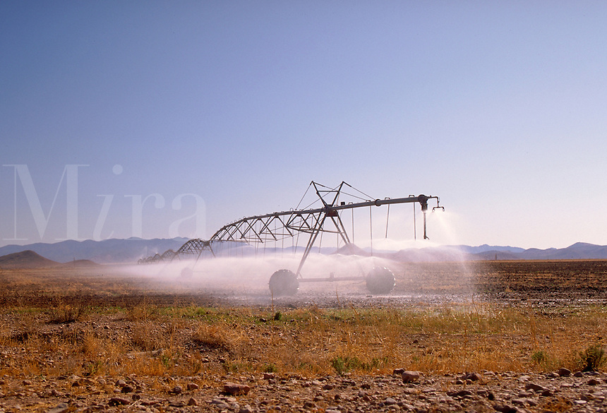 Irrigation unit watering field on SR 191 near Elfrida, AZ. Elfrida Arizona USA SR 191.