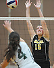 Jillian Graham #15 of Wantagh defends against a spike attempt by Rachel Foley #4 of Lynbrook during a Nassau County Conference A1 varsity girls volleyball match at Lynbrook High School on Thursday, Sept. 8, 2016. Wantagh won the match 3-1.