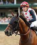 June 15, 2019 : March to the Arch (#11 ,Tyler Gaffalione) wins the 30th running of the G2 Wise Dan Stakes at Churchill Downs, Louisville, Kentucky.  Mary M. Meek/ESW/CSM