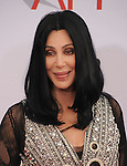 CULVER CITY, CA. - June 10: Cher arrives at the 38th Annual Lifetime Achievement Award Honoring Mike Nichols held at Sony Pictures Studios on June 10, 2010 in Culver City, California.