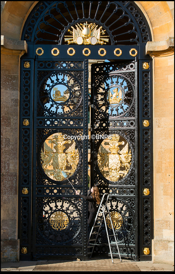 BNPS.co.uk (0102 558833)<br /> Pic: PhilYeomans/BNPS<br /> <br /> Golden Gates restored to their former glory.<br /> <br /> The majestic gates which guard the entrance to Blenheim Palace, Sir Winston Churchill's birthplace, have been given a golden makeover.<br /> <br /> The largest monumental entrance to a private palace in Britain, the massive 20 ft high, 17 tonne gates, installed in 1852, have been painstakingly restored using over 6,000 leaves of 24 carat gold.<br /> <br /> Gilder John Naysmith painstakingly stripped and re-painted the wrought iron and then applied 240 books of gold leaf to the Marlborough coat of arms and crest by hand.