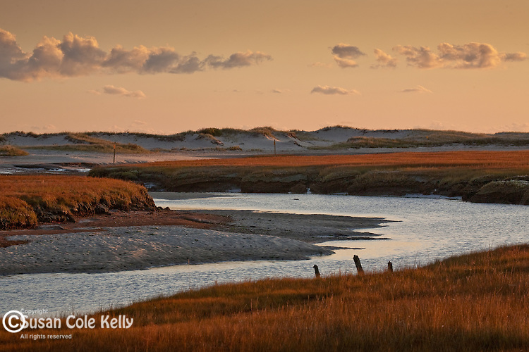 Mill Creek marsh, Sandwich, Cape Cod, MA, USA