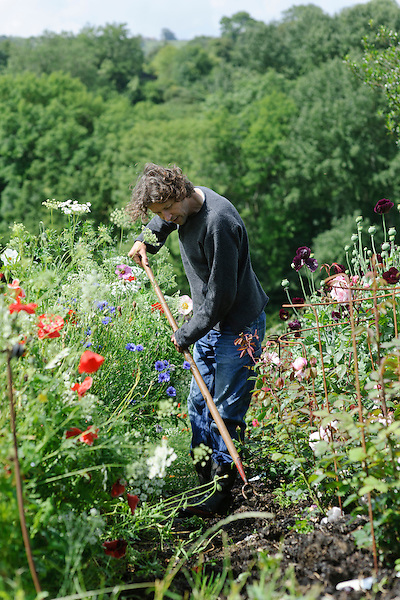 Dan Hoeing amongst Meadow