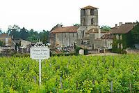 chateau canon saint emilion bordeaux france