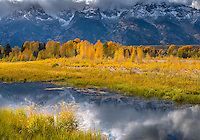 Grand Teton National Park, WY<br /> Clearing storm over the Teton Range with reflections on a beaver pond near Schwabacher Landing,  Snake River