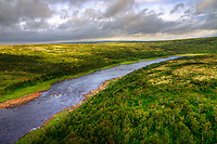 Atlantic Salmon River Yokanga, Kola peninsula Russia