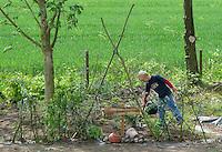 Schulgarten, Anlage eines Schmetterlingsgarten, Garten der Grundschule Nusse wird als Projektarbeit von einer 1. Klasse gestaltet, Kinder legen mit Weidenzaun abgegrenzten Raupenkindergarten an, wichtige Fraßpflanzen für Schmetterlingsraupen werden gepflanzt, Junge gießt, Gartenarbeit
