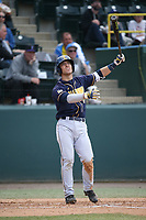 Denis Karas (4) of the California Bears bats against the UCLA Bruins at Jackie Robinson Stadium on March 25, 2017 in Los Angeles, California. UCLA defeated California, 9-4. (Larry Goren/Four Seam Images)