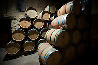 Rioja wine in American oak barrels in cave at Bodegas Agricola Bastida in Rioja-Alaveda area of Basque country, Spain