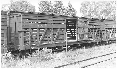 Stock cars 5798 and 5767 at Sapinero.<br /> D&amp;RGW  Sapinero, CO  Taken by Maxwell, John W. - 9/19/1948