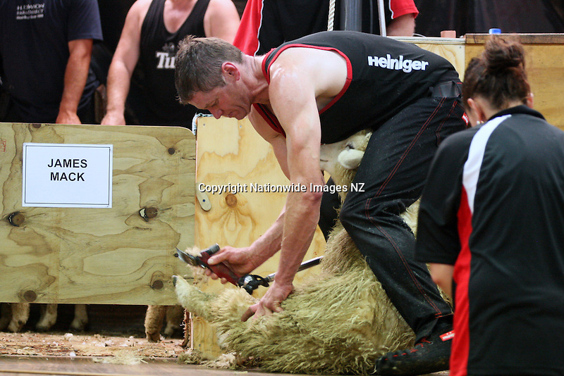 James Mack shearing in the Heiniger Four Stand Crossbred Eight Hour World Record Attempt, Centre Hill, Mossburn, New Zealand, Tuesday, February 05, 2013. Credit:NINZ / Dianne Manson.