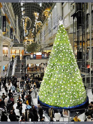 Christmas In Toronto Canada.Christmas Season Toronto Ontario Canada Fashion