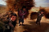 Pol-i-Kumbri / Afghanistan.<br /> Contadini in cammino nella steppa nella remota area di Pol-i-Kumbri, Baghlan Province, nel nord Afghanistan.<br /> Foto Livio Senigalliesi.<br /> Pol-i-Kumbri/Baghlan Province /Afghanistan.<br /> Farmers living in the remote area of Pol-i-kumbri, in the north Afghanistan.<br /> Photo Livio Senigalliesi