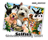 Howard, SELFIES, paintings+++++Summer Pals,GBHRPROV193,#Selfies#, EVERYDAY