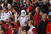 HAWGS ILLUSTRATED JASON IVESTER --10/31/2015--<br /> Arkansas vs Tennessee-Martin football