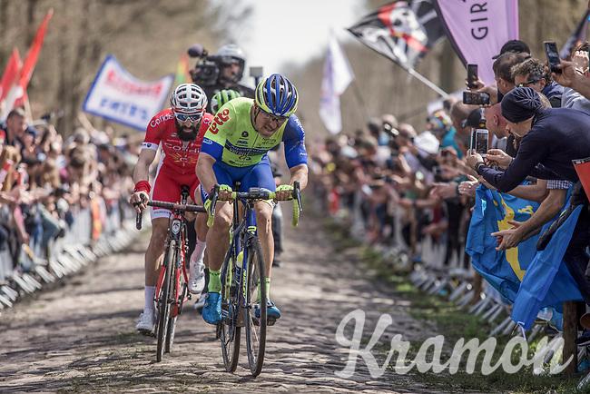 exiting the legendary Arenberg Forest / Bois de Wallers <br /> <br /> 116th Paris-Roubaix (1.UWT)<br /> 1 Day Race. Compiègne - Roubaix (257km)