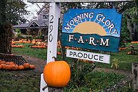 Morning Glory Farm, Martha's Vineyard, Massachusetts, USA