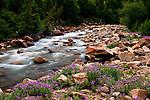 Travel:  Collegiate Peaks Colorado