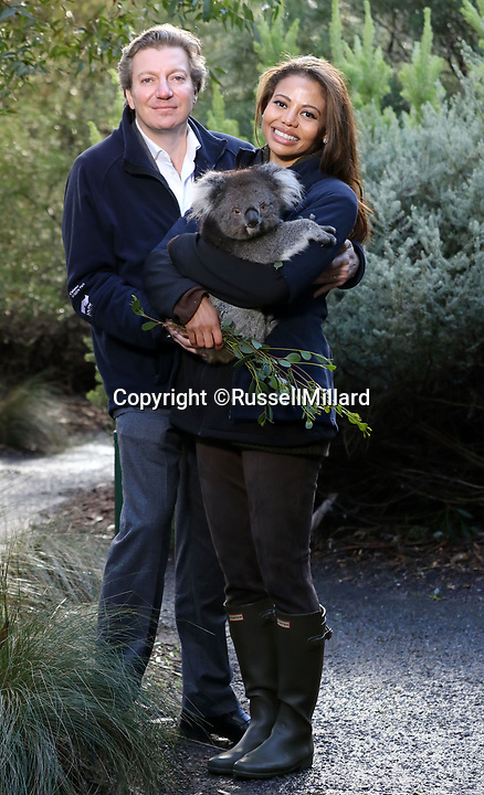 BNPS.co.uk (01202) 558833Pic: RussellMillard/Longleat/BNPS<br /> <br /> Viscount Weymouth, Ceawlin Thynn and his Strictly Come Dancing star wife Emma with a koala at Cleland Wildlife Park near Adelaide.<br /> <br /> Groundbreaking research carried out by British scientists may help to secure the long term survival of the 'threatened' koala in the wild.<br /> <br /> They have identified a genetic mutation in the marsupials which causes a kidney disease that affects almost 60 per cent of koalas in captivity and the wild.<br /> <br /> The discovery was made by University of Nottingham researchers while carrying out tests on tragic Wilpena, a southern koala who died at Longleat Safari Park in Wilts last year.<br /> <br /> She had been bought over from Adelaide in Australia with four other koalas last October as part of a conservation programme, but succumbed to oxalate nephrosis in January.<br /> <br /> It is hoped the breakthrough will help them to develop cross-breeding programmes to eradicate the genetic mutation.