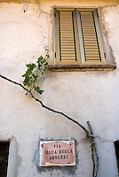 San Lorenzo Belizzi, May 2007. San Lorenzo di Calabria village is one of the many picturesque villages that line the mountain slopes of Pollino National Park. Photo by Frits Meyst/Adventure4ever.com