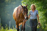 20150825 John Horses