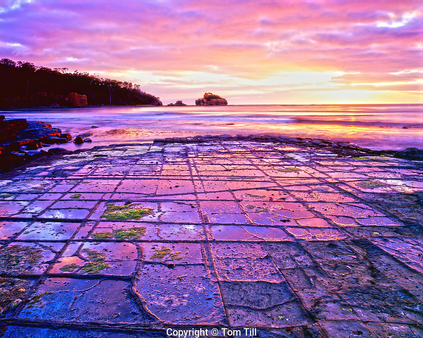 Tessellated Pavement in dawn light, Tessellated Pavement State Reserve,<br /> Tasmania, Australia