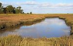 Landscape at low tide Barthorp's Creek, Hollesley Bay, near Shingle Street, Suffolk, England, UK