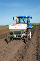 Applying base fertilser into the potato seed bed at planting - Suffolk, April