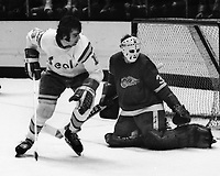 Seals Jim Moxey and Detroit Red Wing goalie Terry Richardson. (1975 photo/Ron Riesterer)