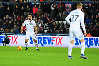 Cameron Carter-Vickers of Swansea City in action during the Sky Bet Championship match between Swansea City and Birmingham City at the Liberty Stadium in Swansea, Wales, UK. Tuesday 29 January 2019
