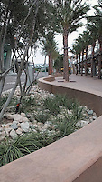 San Diego International Airport, Terminal 2--curved concrete walls and walkways with drought-tolerant plants  and palm trees. Patricia Trauth, Landscape Architect.