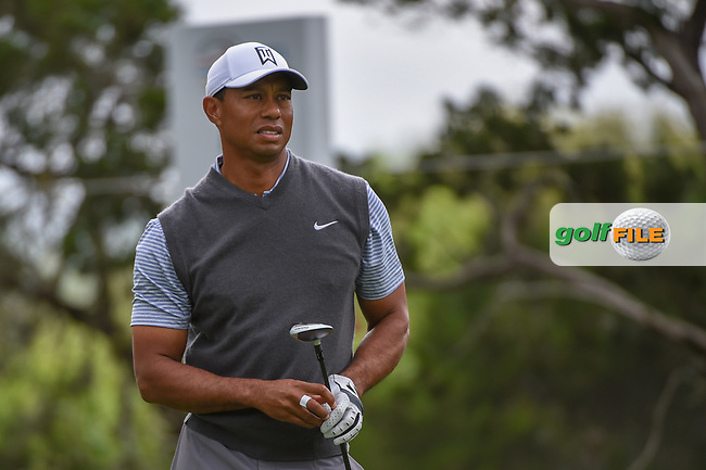 Tiger Woods (USA) watches his tee shot on 2 during day 3 of the WGC Dell Match Play, at the Austin Country Club, Austin, Texas, USA. 3/29/2019.<br /> Picture: Golffile | Ken Murray<br /> <br /> <br /> All photo usage must carry mandatory copyright credit (© Golffile | Ken Murray)