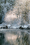 Winterscape, Snoqualmie River, Washington, USA