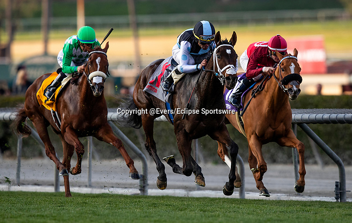JAN 11: She's So Special breaks her maiden at Santa Anita Park in Arcadia, California on January 11, 2020. Evers/Eclipse Sportswire/CSM