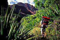 Hiker in Waimea Canyon. Kauai.