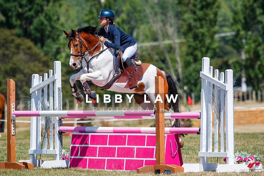 Class 31 Pony 1.05m. 2020 NZL-Fieldline Horse Floats Brookby Showjumping Summer GP Show. Papatoetoe Pony Club. Auckland. Sunday 9 February. Copyright Photo: Libby Law Photography